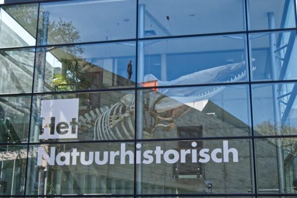 Natuurhistorisch museum Rotterdam met spiegeling naar Kunsthal