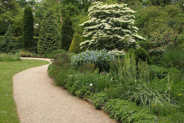 Trompenburg tuinen en Arboterum in Rotterdan